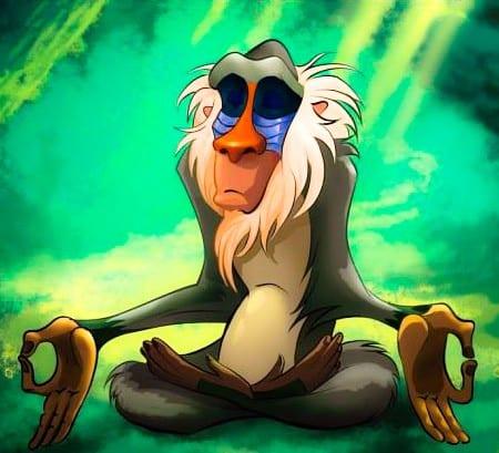 Pic 2 Zen Monkey