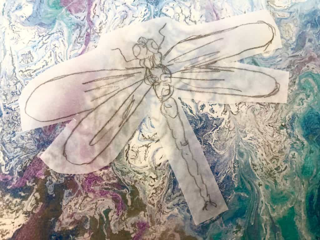 Dragonfly Image6